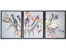 8---Iris-Triptych-v