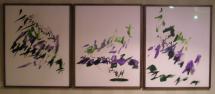 Iris Series III